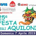 La 25° Festa degli Aquiloni